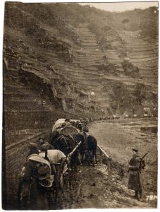 World War One (WWI): Soldiers watching line of wagons in a pit