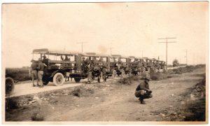 World War One (WWI): Line of old transport trucks.